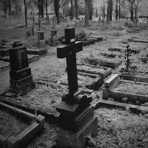 Stary Cmentarz w Orzegowie